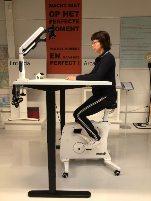 Flexistep desk bike